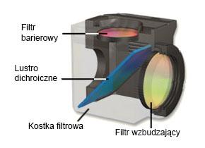 Filtr fluorescencyjny budowa Opta-Med