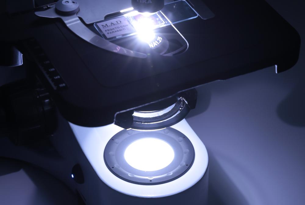 Oświetlenie w mikroskopie