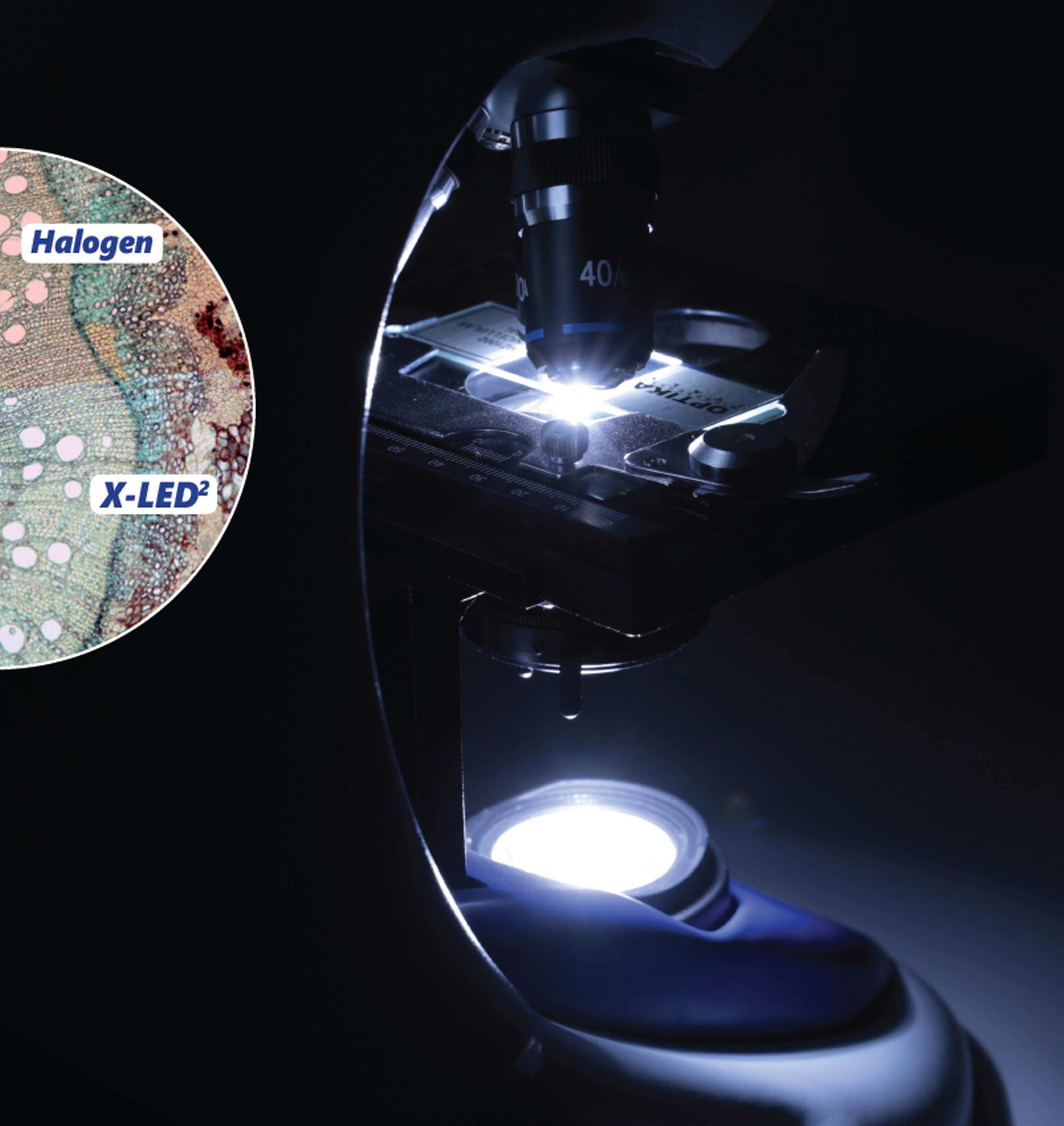 Porównanie oświetlenia LED z halogenem w mikroskopie Optika