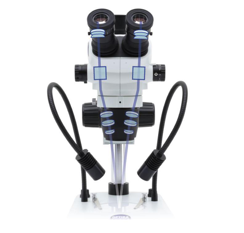 System optyczny mikroskopu stereoskopowego