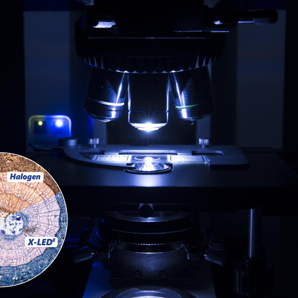Mikroskop z oświetleniem ledowym B-1000